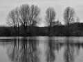 Reflections on Langford Lake
