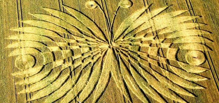 Crop-Circles-Wiltshire