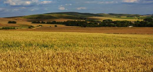 Wiltshire-Sightseeing